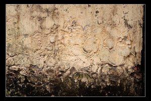 Tường cũ rêu phong. Nguồn: photo.com.vn