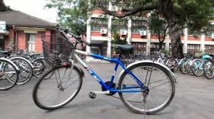 Và người bạn xe đạp đồng hành này nữa
