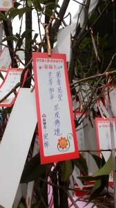 Một lời nguyện cầu của người tên Định Tường: Quốc thới dân an, thế giới hòa bình, sớm thành Phật đạo