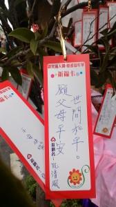 Lời nguyện Thanh Phong: Nguyện phụ mẫu bình an, thế gian hòa bình